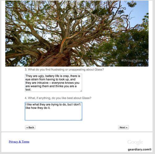 google glass survey 1