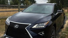 The 2016 Lexus RX 350 F SPORT First Drive