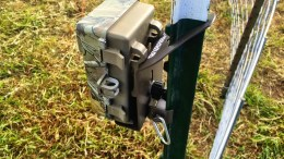 T-Mate Fixes Wildlife Camera Mounting: No More Complaints About Missed Wildlife Photos!