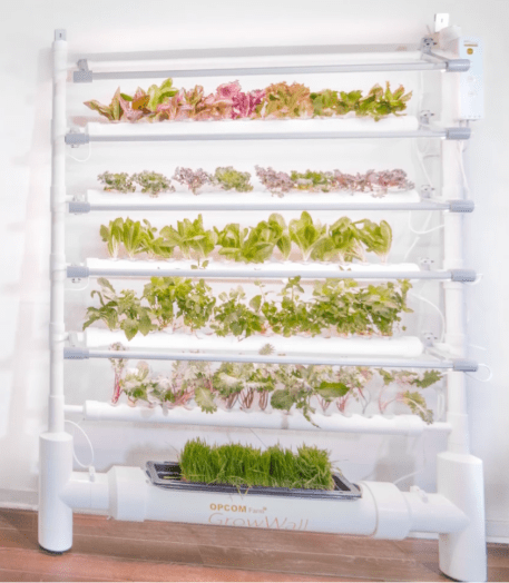 The OPCOM GrowBox and GrowWall: Self-Contained and Soil Free Indoor Gardening  The OPCOM GrowBox and GrowWall: Self-Contained and Soil Free Indoor Gardening