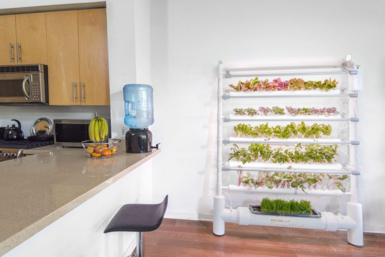 The OPCOM GrowBox and GrowWall: Self-Contained and Soil Free Indoor Gardening