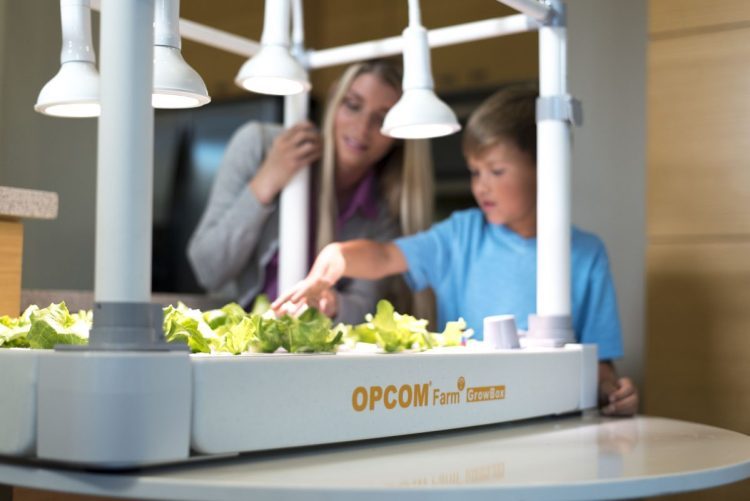 the-opcom-growbox-and-growwall-6