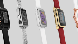 Pebble's Death Is No One's Fault but Their Own