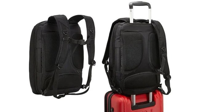 Professional Slim Laptop Backpack: The Bag That Can Do It All, from eBags