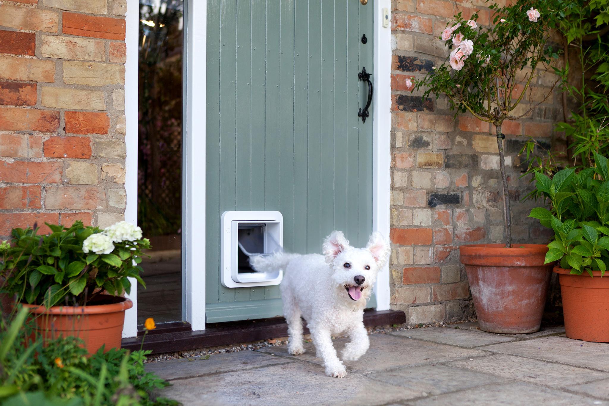 Sureflap Microchip Pet Door Keep Unwanted Varmints Out