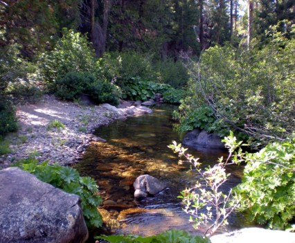 Very Small Sierra Stream