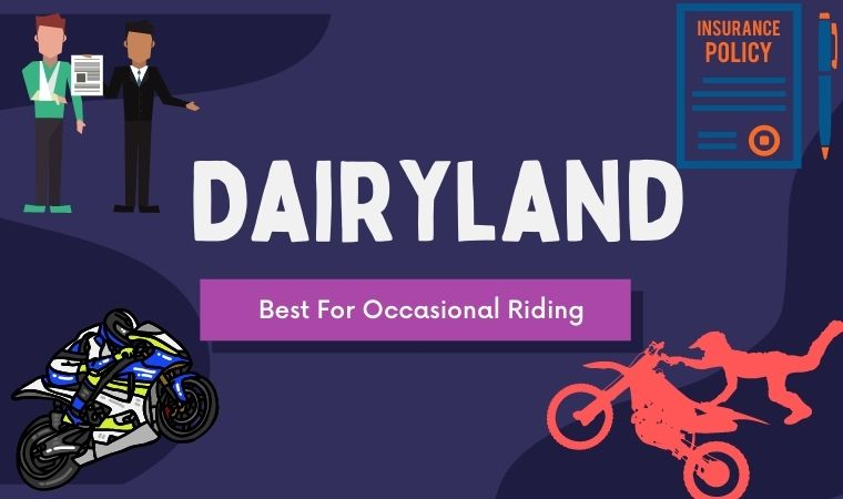Dairyland - Best For Occasional Riding