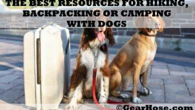 best resources for camping, hiking or backpacking with dogs