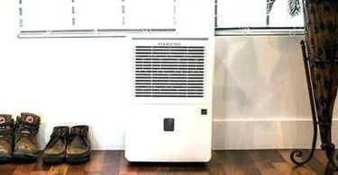 best dehumidifier for mold basement