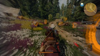 witcher3-ps4 (10)