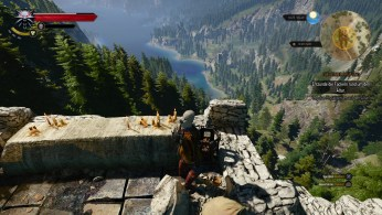 witcher3-ps4 (15)