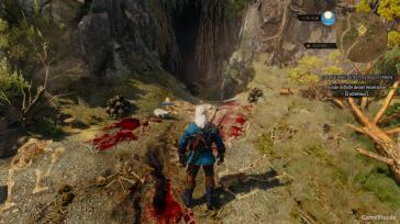 witcher3-ps4 (3)