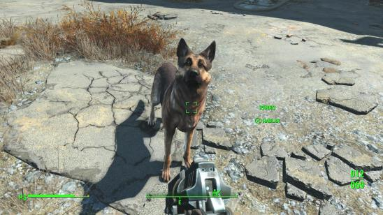 fallout-4-ps4-screenshots-leaked (23)