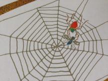 Und schwupp, hat die kleine Spinne die Fliege gefangen...
