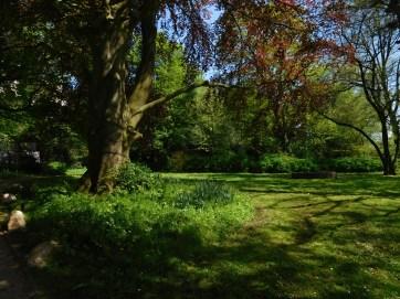 Stadtgarten (4)