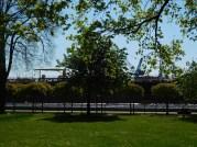Stadtgarten (8)