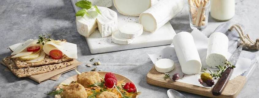 Franske gedeoste, gederuller, gedefriskoste og andre med tilbehør til ostebordet