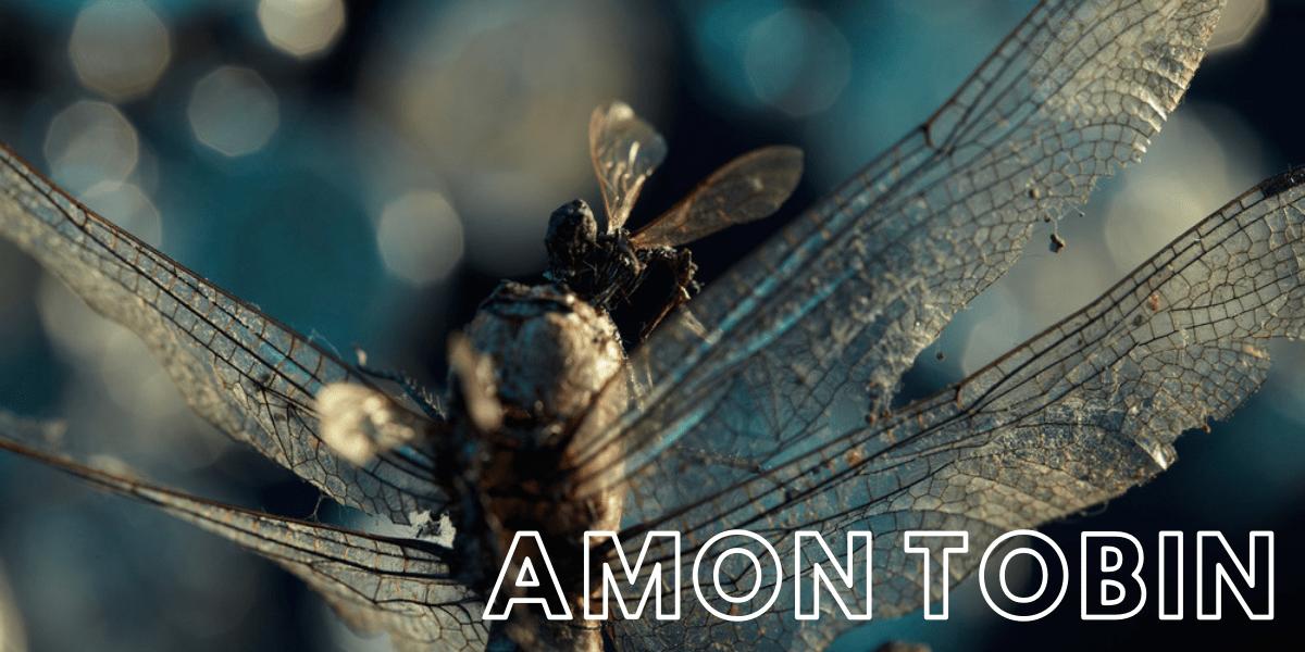 This is Amon Tobin (Cujo)