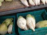 東風平にある「アグリハウスこちんだ農産物直売店」が素敵だった!
