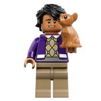 Lego TBBT 4