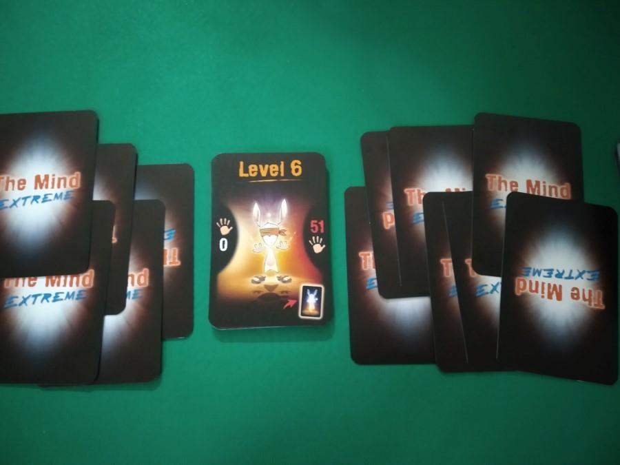 livello 6