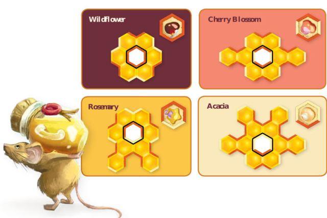 honey buzz - i tipi di cella