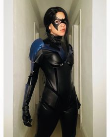 TH snarky 09 nightwing