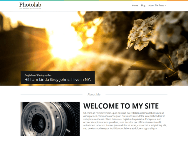 free templatemonster wordpress theme