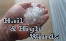 Weather Words Fan Favorite Foto