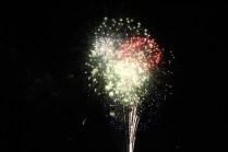 Freedom Festival Fireworks 16 (16)