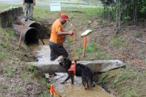 US Canine Biathlon (28)