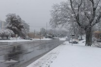 Anniston Snow Dec. '17 (19)