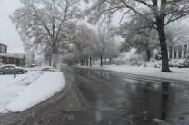 Anniston Snow Dec. '17 (7)