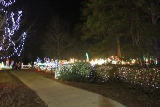 Christmas At The Falls '17 (115)