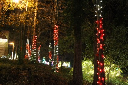Christmas At The Falls '17 (56)