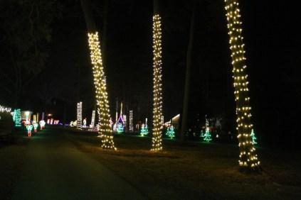 Christmas At The Falls '17 (75)