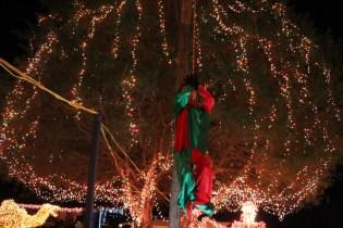 Gilley's Christmas Lights '17 (15)