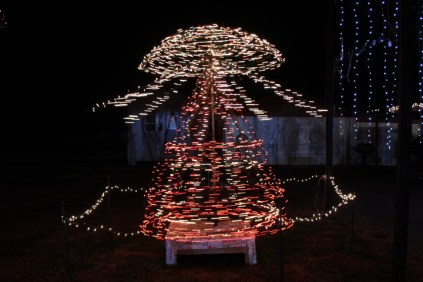 Gilley's Christmas Lights '17 (23)