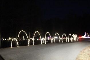 Pell City Lakeside Park Christmas '17 (11)