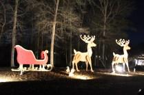Pell City Lakeside Park Christmas '17 (17)