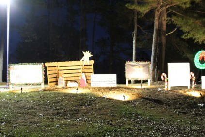 Pell City Lakeside Park Christmas '17 (34)
