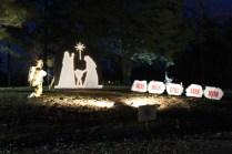 Pell City Lakeside Park Christmas '17 (37)