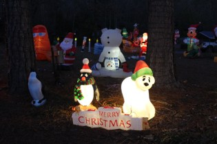 Gaddy's Light Display 2018 (22)