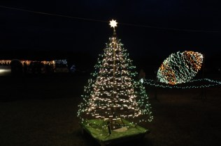 Gilley's Christmas Lights 2018 (10)