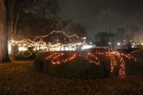 Quintard Median Christmas Lights 2018 (3)