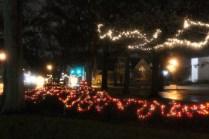 Quintard Median Christmas Lights 2018 (39)