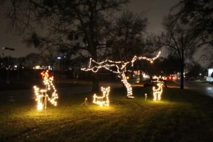 Quintard Median Christmas Lights 2018 (75)