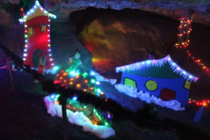 Rickwood Caverns Christmas 2018 (20)