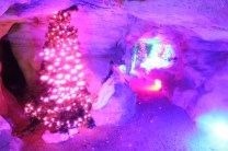 Rickwood Caverns Christmas 2018 (24)