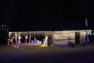 christmas at the falls 2018 (65)
